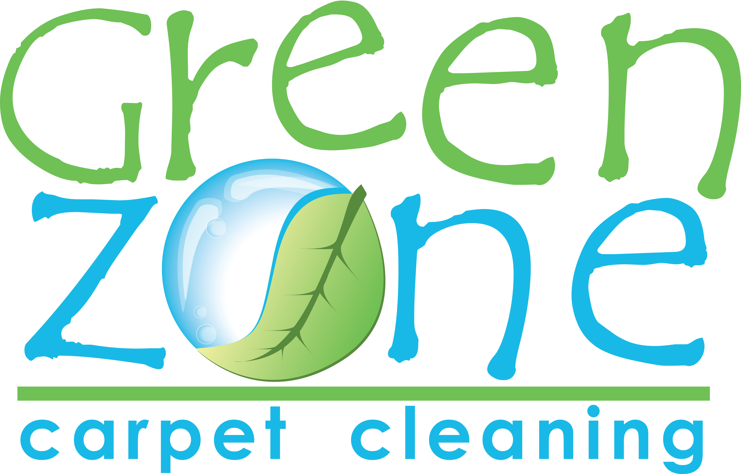 19 Area Rug Cleaning Green Zone Full Logo